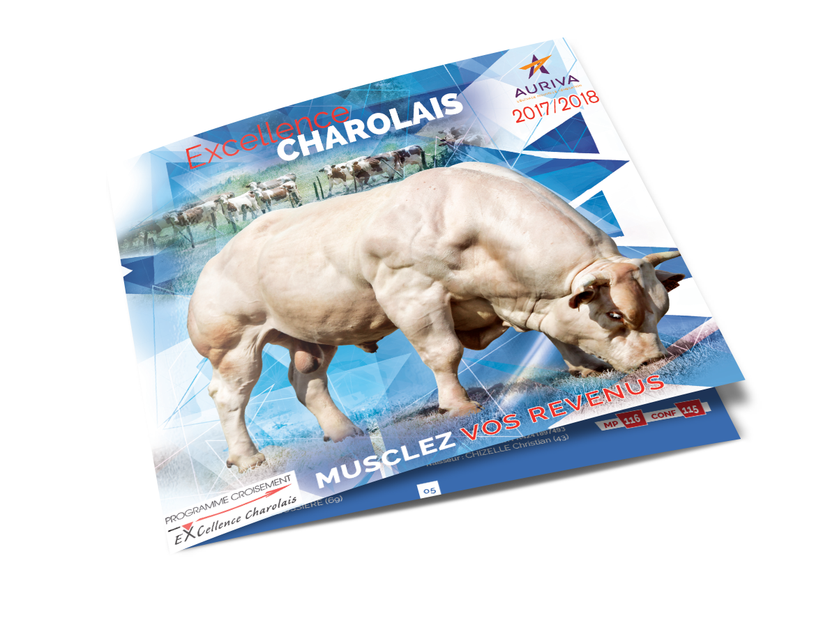 Catalogue excellence charolais 2018
